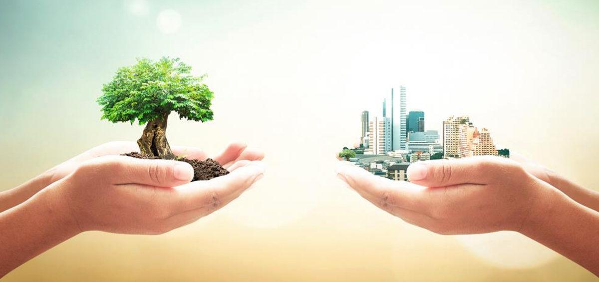 Sintomas de uma empresa não sustentável