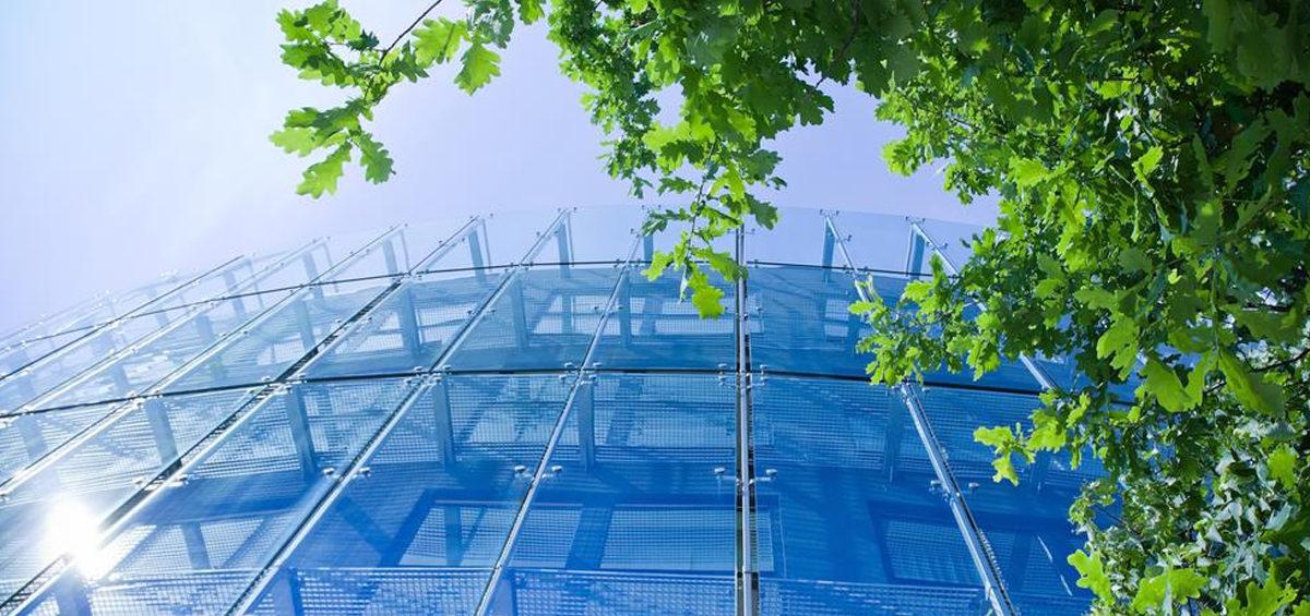 Sustentabilidade empresarial: Conheça as maiores vantagens de tornar sua empresa sustentável
