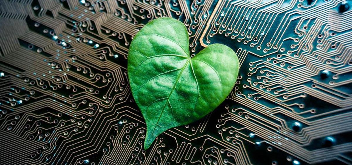 TI verde: uma oportunidade estratégica para sua empresa aumentar o faturamento